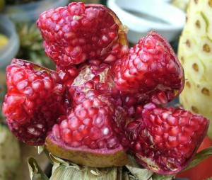 pomegranate-1539772-639x541